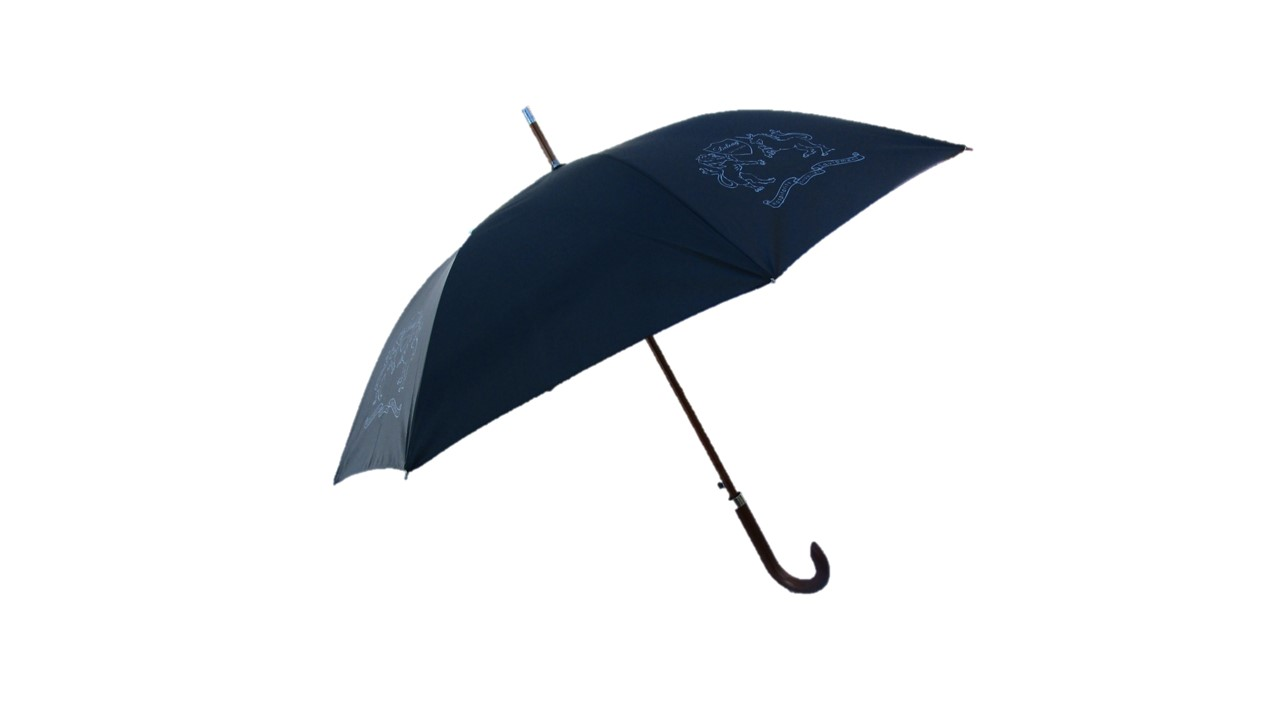 Holstock Schirm (2)
